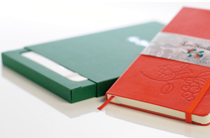 customised moleskine notebooks